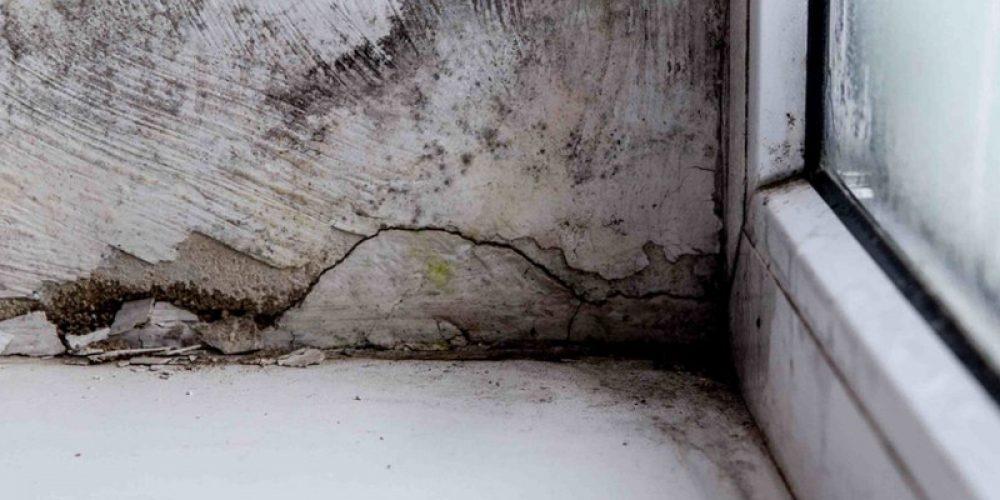 Comment traiter l'humidité sur les murs ?